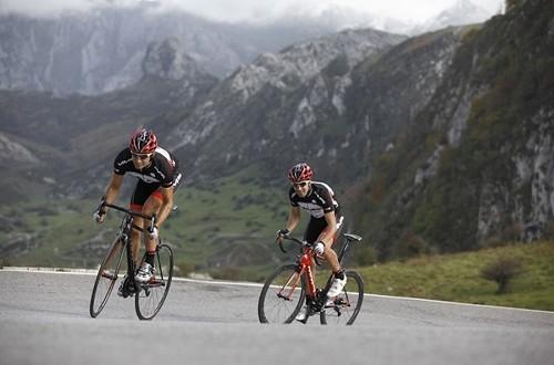 Ciclismo en carretera: trabajo y táctica de equipo